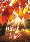 Tract - What is Life  (pack of 100)