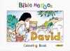Bible Heroes Colouring Book - David